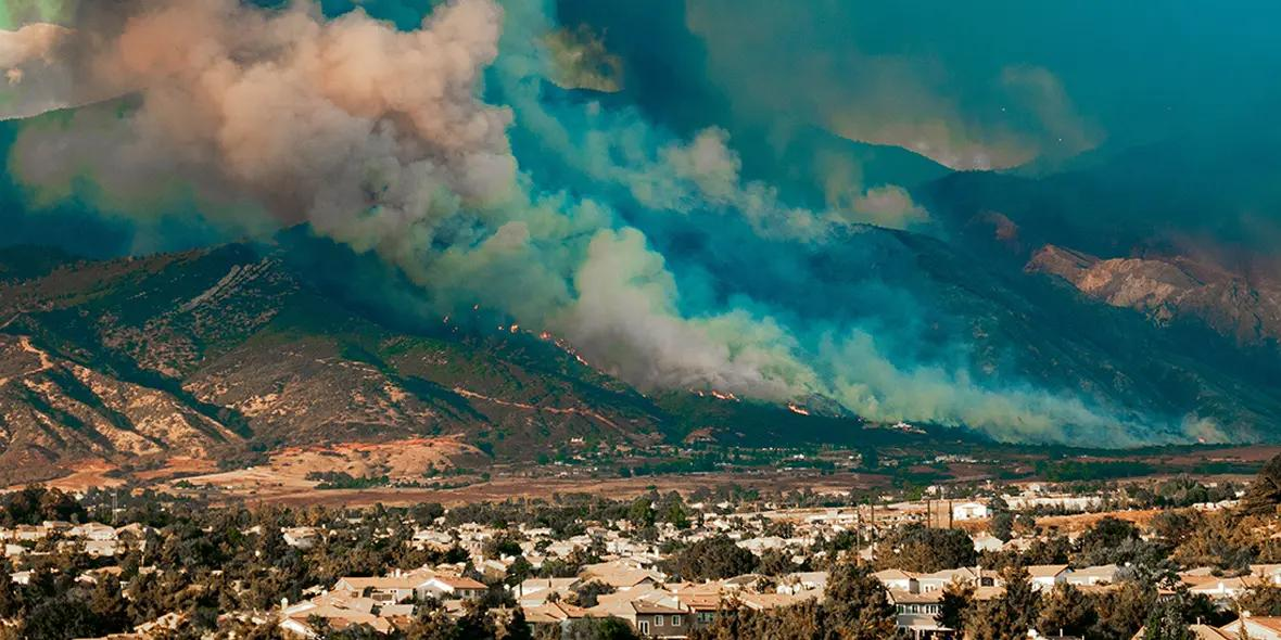 Wildfire Recovery and Resiliency in the Bay Area
