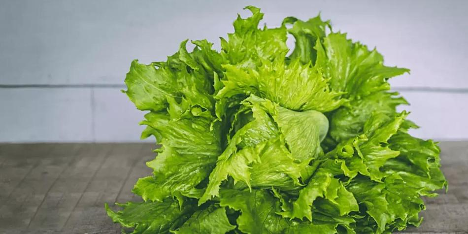 WOULD%2020YOU%2020WALK%2020FIVE%2020MILES%2020FOR%2020A%2020HEAD%2020OF%2020LETTUCE%203F%2020.webp