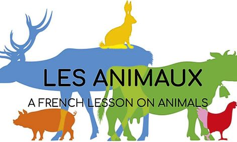 Les Animaux (a French Lesson on Animals!) | Small Online Class for Ages  8-13 | Outschool