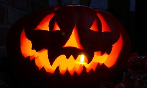 Extracting Dna From Your Halloween Or Thanksgiving Pumpkins