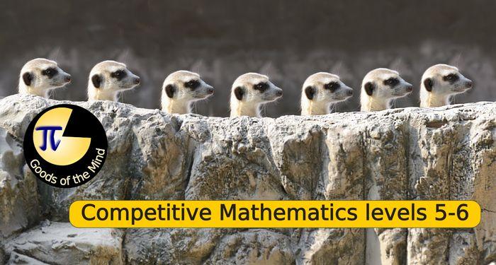 Competitive Mathematics