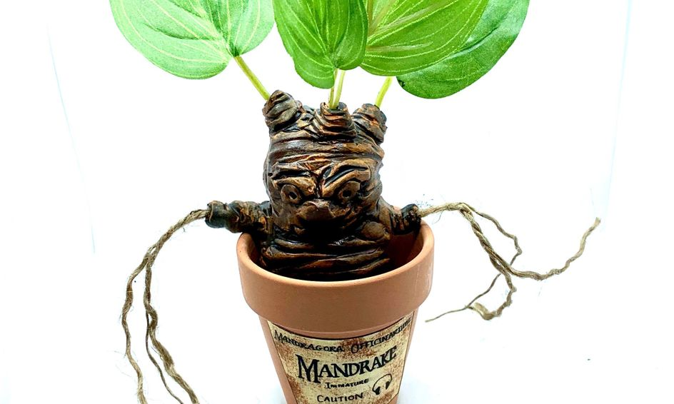 Wizard Crafts: Let's Make an Angry Root! | Small Online Class for Ages 9-14  | Outschool