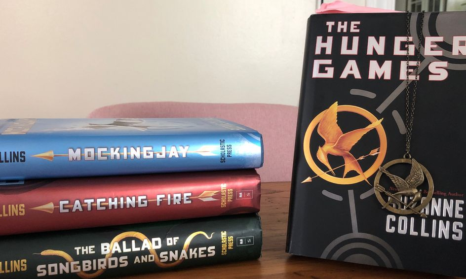 young Book series like hunger games for adults