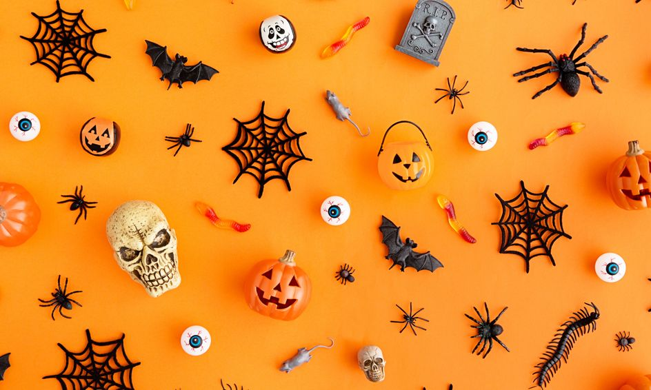 Halloween Grammar Identifying Spooky Adjectives Verbs Ages 7 10 Small Online Class For Ages 7 10 Outschool