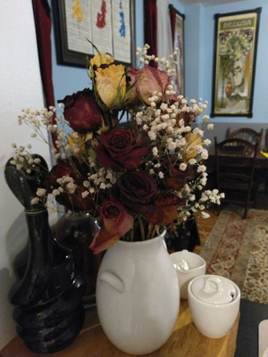the flowers i keep on my dining room table
