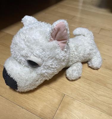 My stuffed dog.