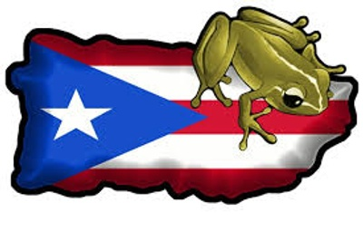 Puerto Rican Flag with a Coqui on it.