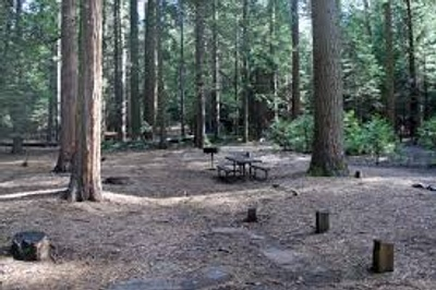 This is a camp site in pi pi campground