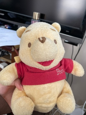 picture of my winnie the pooh toy