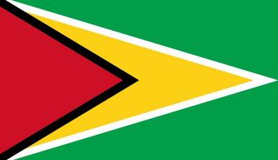 This is a Photo of the flag of Guyana.