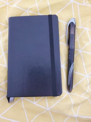 This is a picture of my journal and pen.