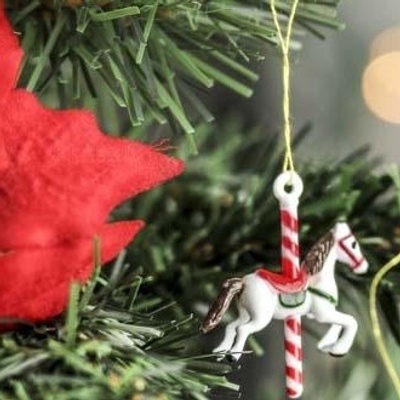 Photo of a family christmas ornament