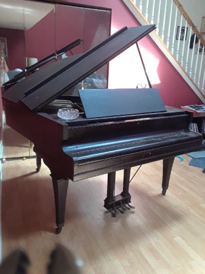acoustic baby grand piano