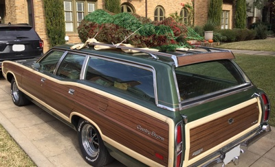 Country Squire with tree on roof