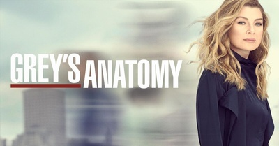 That is Meredith Grey.