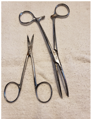 Great Grandfather's Medical Scissors