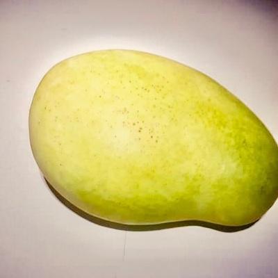 Mango Francisque,Ht