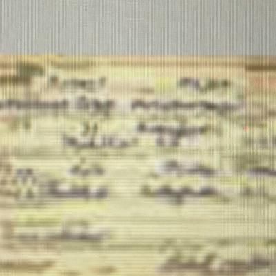 U.S world war 2 draft card