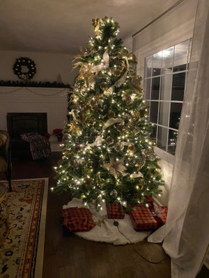 Our Christmas tree with white lights.