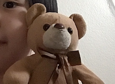 brown teddy bear wearing a brown bow