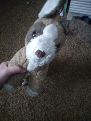 this is the stuffed animal