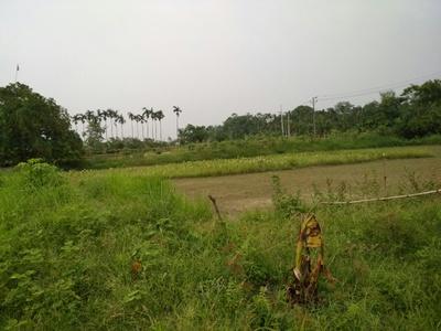 Farthest reach of the estate