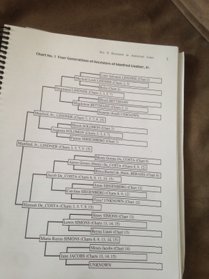 The family tree.