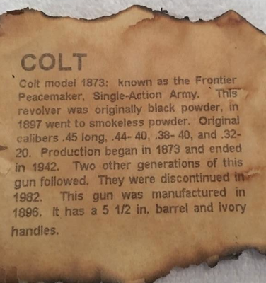 The history of the gun.