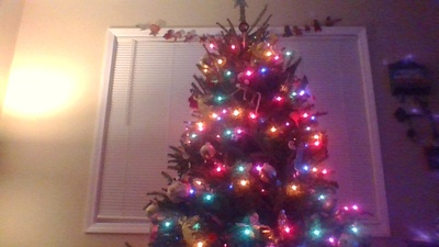 My families Christmas tree