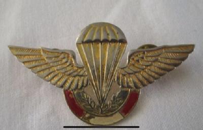 Peruvian Army Paratrooper Insignia pin