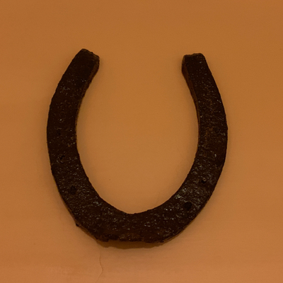 old horseshoe from my backyard