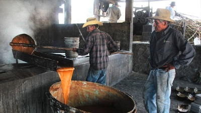 The Molienda is where they make the honey.