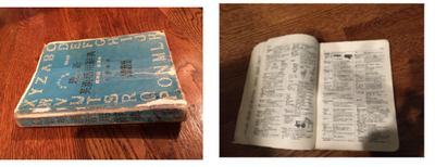 30 Year old Mandarin/English Dictionary
